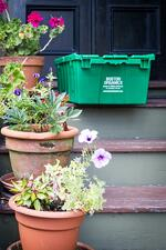 boston_organics_delivery_porch_box_plant2_1080px